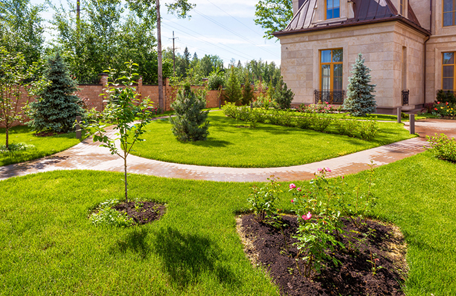 Creating a low maintenance garden for Creating a low maintenance garden