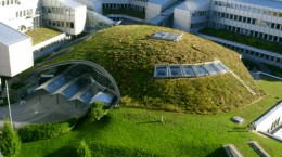 green-roof-banner