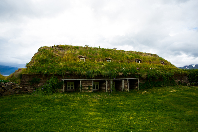 What Is a Green Roof and How Does It Help The Environment?