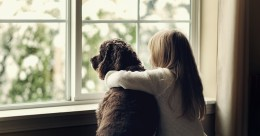 double glazing can save you money