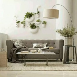 Houseplants are a quick way of refreshing a room