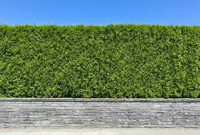 Planning Permission Series: Do I need planning permission for a garden wall