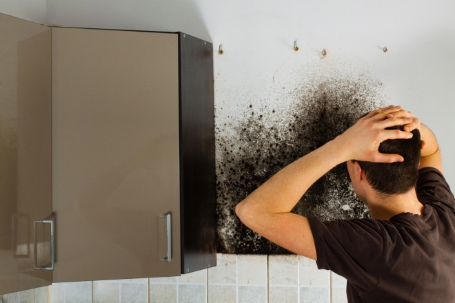Could your cavity wall insulation be causing damp problems?